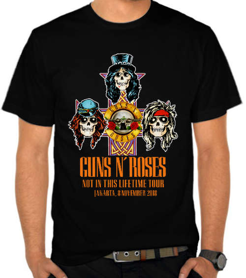 Guns N Roses - Not In This Lifetime Tour