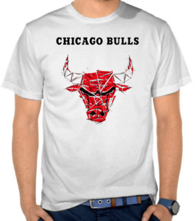 Tim NBA - Chicago Bulls 3 (Art)