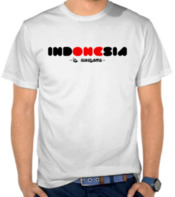 Indonesia - Is Awesome 2