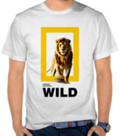 Natgeo Wild - Lion Box 2