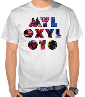 Coldplay Mylo Xyloto 2