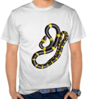 Yellow Stripe Snake
